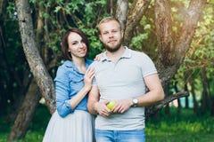 Les couples dans l'amour ont un repos dans le champ de pommiers d'été Photo stock