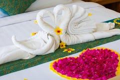 Les couples de cygne ont mis dessus le lit de lune de miel avec des pétales de rose pour l'amant de lune de miel Image stock