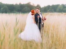 Les couples de mariage dans l'amour apprécient un moment de bonheur et regardent affectueusement l'un l'autre sur le champ de blé Image libre de droits