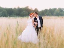 Les couples de mariage dans l'amour apprécient un moment de bonheur sur le champ de blé, appréciant le jour de mariage ensemble Images stock