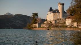 Les couples des canards volent et descendent sur le lac annecy, France à proximité de château de Duingt pendant un coucher du sol clips vidéos