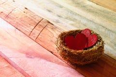 Les couples des coeurs rouges dans l'oiseau nichent Images libres de droits