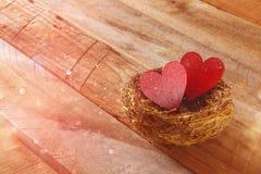 Les couples des coeurs rouges dans l'oiseau nichent Photographie stock