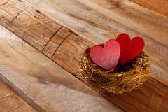 Les couples des coeurs rouges dans l'oiseau nichent Photographie stock libre de droits
