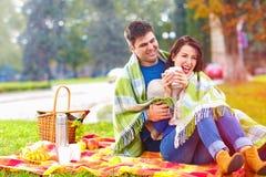 Les couples heureux appréciant l'automne pique-niquent en parc de ville Photos libres de droits
