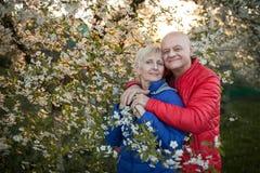 Les couples heureux d'aînés embrassent et sourient près de l'arbre de fleur ; Photo stock