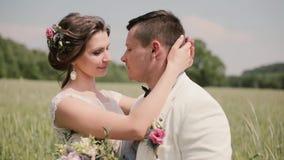 Les couples heureux en part d'amour suggèrent le moment se tenant dans un domaine de blé un jour du mariage Jeunes mariés embrass banque de vidéos