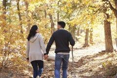 Les couples hispaniques tiennent des mains augmentant dans la forêt, vue arrière Photos stock