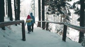 Les couples marchant le long de la forêt de montagne traînent dans la neige Photos stock
