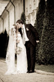 Les couples neuf-mariés Photos stock