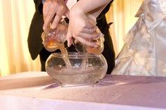 Les couples ont mis le goldfish dans la cruche de poissons Images libres de droits