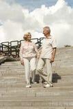 Les couples pluss âgé parlants ont fait une promenade Photographie stock libre de droits