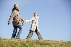 les couples stationnent la marche aînée Image libre de droits