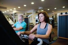Les couples supérieurs de bel ajustement dans faire de gymnase cardio- établissent Image stock