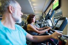 Les couples supérieurs de bel ajustement dans faire de gymnase cardio- établissent Images stock