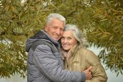Les couples supérieurs heureux s'approchent de la rivière Photo libre de droits