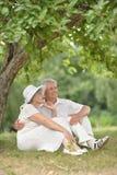 Les couples supérieurs se reposent sur une terre Image stock