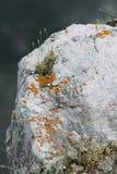 Les courbures de la rivière et des belles falaises photographie stock libre de droits