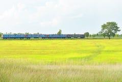Les courses de train par les champs luxuriants Photographie stock