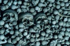 Les crânes humains d'arbre sur le fond d'os sont dans le c foncé photo stock