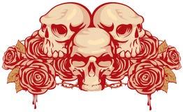 Les crânes humains et se sont levés illustration libre de droits