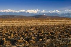 Les crêtes de neige de chaîne de montagne ont labouré la zone Images libres de droits