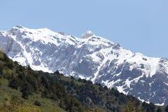Les crêtes neigeuses de Tien Shan Images stock