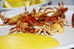 Les crabes de Shell et le fond brouillé par citrons, se ferment  Image stock