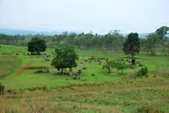 Les cratères de bombe de la guerre de Vietnam entourent les urnes en pierre mégalithiques géantes à la plaine du site archéologiq image libre de droits