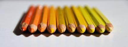 Les crayons jaunes et oranges se situent dans une rangée Image libre de droits