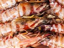 Les crevettes roses Photos stock