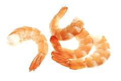 Les crevettes rouges Photos stock