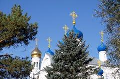 Les croix sur les dômes de la cathédrale Photographie stock libre de droits