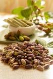 Les ?crous doux, sensibles et parfum?s, les pistaches de Bronte avec la couleur verte brillante, ingr?dient pour la cuisine itali image stock