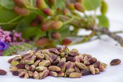 Les ?crous doux, sensibles et parfum?s, les pistaches de Bronte avec la couleur verte brillante, ingr?dient pour la cuisine itali images stock
