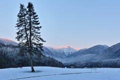 Les crêtes de montagne de lions au lever de soleil de winer Images stock