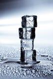 les cubes glacent la fonte Images stock