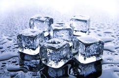 les cubes glacent la fonte Photographie stock libre de droits
