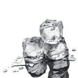 les cubes glacent trois Image libre de droits