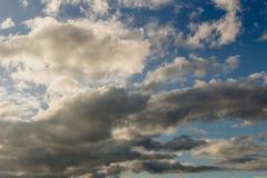 Les cumulus sur un ciel bleu image libre de droits
