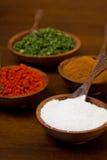 Les cuvettes ont rempli de cumin, de paprika, de sel et de persil Photos libres de droits