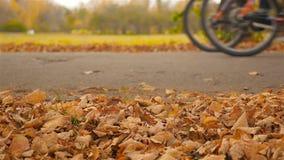 Les cyclistes conduisent après le mouvement lent Plan rapproché banque de vidéos