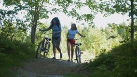 Les cyclistes d'amie laissent le chemin du bosquet vert, un jour ensoleillé Photographie stock libre de droits