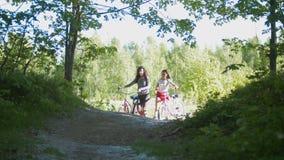 Les cyclistes d'amie laissent le chemin du bosquet vert, un jour ensoleillé Photo stock