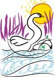 Les cygnes nagent dans le lac illustration de vecteur