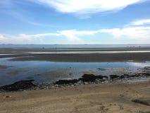 Les déchets et les déchets en plastique sur la plage font la mer pollués photographie stock libre de droits