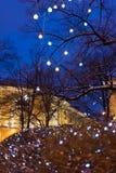 Les décorations de Noël des arbres d'hiver Images stock