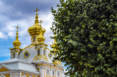 Les dômes d'or de l'église de Peterhof Photographie stock