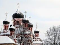 Les dômes de la cathédrale de résurrection couverte de neige sur le fond de ciel image libre de droits