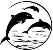 Les dauphins sautant le portrait Photo libre de droits